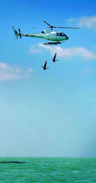 Кліф-дайвери стрибають з вертольота