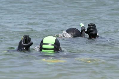 Дайверы погружаются в воду