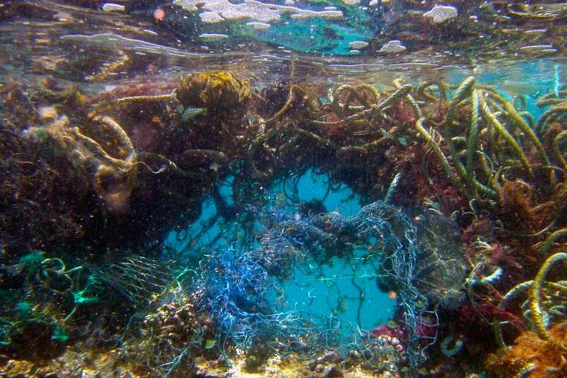Сміттєве скупчення в Тихому океані