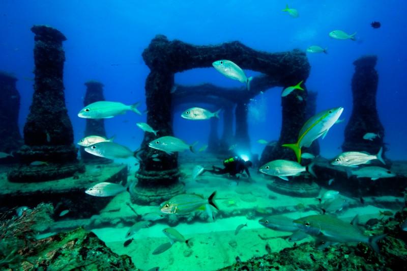 Підводне кладовище — «Меморіальний риф Нептун»