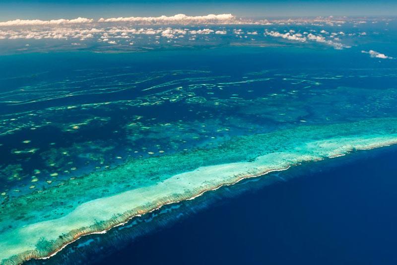Мезоамериканский бар'єрний риф