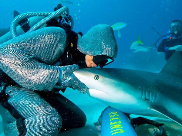 Дайверська кольчуга від акул (Shark suit)