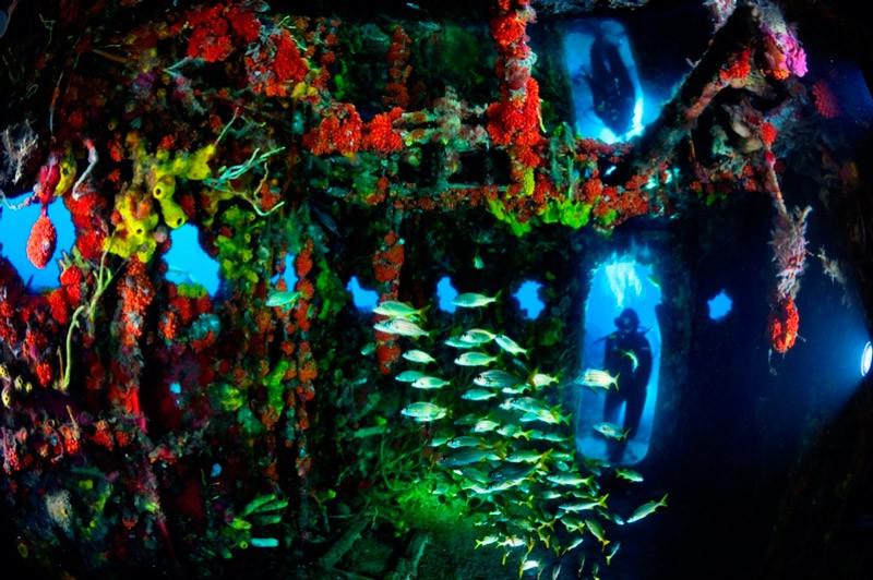 Штучний риф. Капітанський місток корабля берегової охорони «Дуейн»